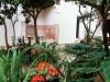 patio-garden-c-keohane